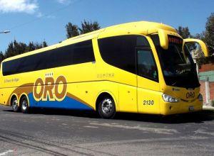 Autobuses Oro