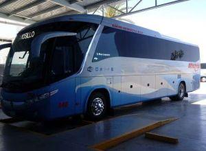 Autobuses Albatros