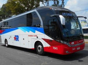 Autobuses Estrella Roja