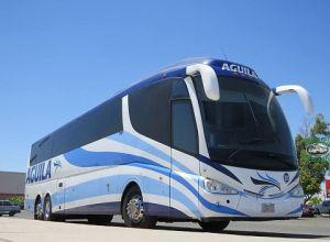 Autobuses Águila