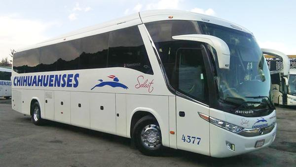 autobuses chihuahuenses
